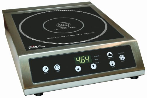 Best Induction Cooktop (REVIEWS & BUYING GUIDE 2021)